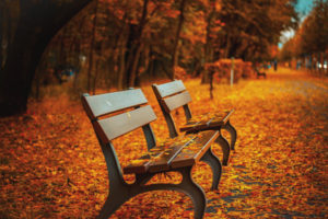 park_bench_02
